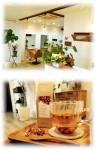 ごこち 居心地の良い空間 美容室 美容と健康