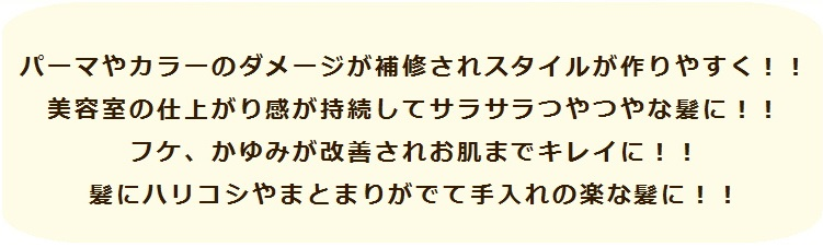 ゴコチシャンプー01 - コピー