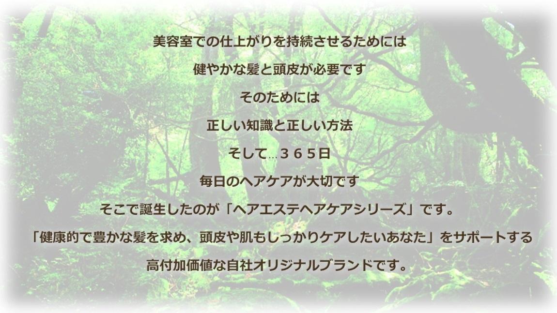 ヘアケアシリーズ1 - コピー