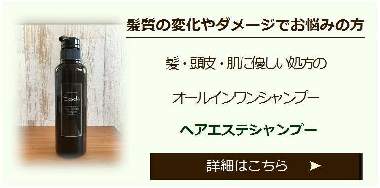 ヘアケアシリーズ - コピー (2)