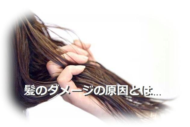 お知らせ2 - コピー